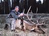 New Mexico Elk Hunt 57