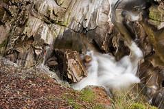 Falls of Bruar (Stuart McColl) Tags: uk scotland perthshire bruar fallsofbruar