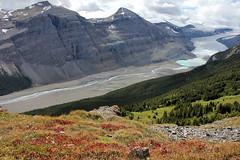 Parker Ridge (SWR Chantilly) Tags: canada jasper banff