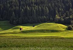 Prati in Alto Adige (Diana Cimino Cocco) Tags: montagne estate natura erba dolomiti vacanze colline altoadige prati dobbiaco sancandido supercontestimmersionenellanatura