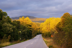 Road at Autumn (nikolaos p.) Tags: autumn fall landscape outdoors landscapes roads halkidiki