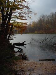 Jelenia Dolina, Warmia, Poland (LeszekZadlo) Tags: autumn naturaleza lake fall nature water landscape natureza poland polska paisaje bayou swamp polen landschaft polonia coutryside pologne warmia ermland paisaye