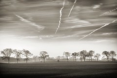 Airway (dubdream) Tags: winter sky blackandwhite cloud white black tree field fog germany landscape nikon forrest contrails hdr schleswigholstein holstein d800 krss dubdream
