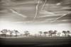 Airway (dubdream) Tags: winter sky blackandwhite cloud white black tree field fog germany landscape nikon forrest contrails hdr schleswigholstein holstein d800 kröss dubdream