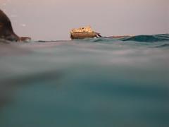 At surface (energia buran) Tags: sea fish coral barco underwater redsea dive egypt deep diving egipto wreck reef buceo thistlegorm arrecife submarinismo pecio marrojo rasmohammed photosub abunahas sharkyolanda blinkagain tiranstraight