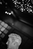 . (LauraKiora) Tags: london silverfox commericial effrafc