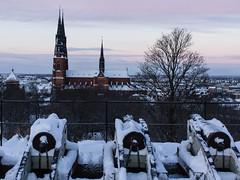 Uppsala Cathedral (afeman) Tags: winter snow weather seasons sweden sony uppsala sverige uppsaladomkyrka uppsalacounty nex7 sigma30mm28exdn