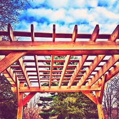 Come with me under the trellis in #StreamzooVille during #MySweetDecember (Jim Turner2) Tags: photooftheday capturedmoments awesomeshots skyporn teamrebel allshots iphoneography iphone4s streamzoo streamzooville mysweetdecember