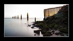 Untitled (dtmateojr) Tags: seascape beach silhouette pier sand rust waves pentax jetty sigma australia queensland highkey 1770 sandgate k5 shorncliffe dtmateojr