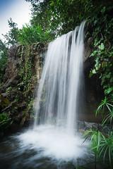 Botanical Gardens waterfall (Sean Lowcay (sealow08)) Tags: park slr nature water waterfall nikon singapore asia 20mm f18 d800 nikond800 nikonflickraward