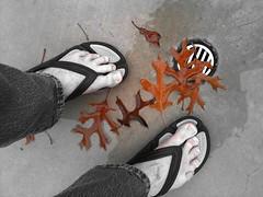 Fall (Brave Heart) Tags: feet me wet water leaves foot leaf toes toe picture drain lookdown veins lookingdown myfeet waterdrain crocs myfoot mytoes touchofcolor flickrtoes footveins flickrfeet flickrfoot
