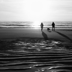 at the end of the day... (PΞRИOD) Tags: ocean people dog beach backlight strand sand couple meer paar hund northsea lowtide sylt nordsee contrejour personen gegenlicht ebbe rippel ripplemarks zx1