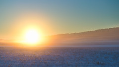 Day 343 - Winter Mist (dennisdasfoto) Tags: schnee winter sunset snow oneaday landscape vinter sonnenuntergang sweden schweden photoaday sverige landschaft sn pictureaday solnedgng landskap kristinehamn project365