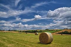 Par un jour d't (Excalibur67) Tags: blue sky cloud white landscape nikon sigma bleu ciel d750 nuages paysage blanc olienne rundball fenaison flickrdiamond 24105f4dgoshsma