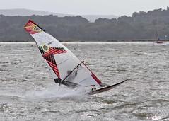 Aug20074a (Mike Millard) Tags: hamworthypark pooleharbour windsurfers