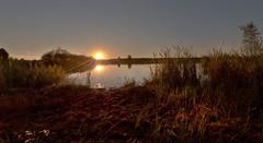 Doubled sun (jan.arnds) Tags: sun sunset mirror reflection still evening outdoor nature calm harmony gras summer lake landscape janarnds