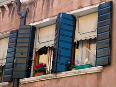 P9242408 Italy Venice (Dave Curtis) Tags: 2013 em5 europe italy omd olympus venice window bird budgie