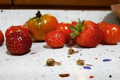 Tres lindos caracolitos, los veis? (marianhergo) Tags: instagramapp square squareformat iphoneography uploaded:by=instagram caracoles fruta verduras huerta