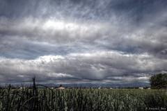 (Pascal Rey Photographies) Tags: paysages paysagesvalledurhne bivrevalloire valloire landscapes landschaft anneyron drmedescollines aruba abw drme hdr