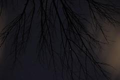 Shot for the Stars (drphilljohnson2010) Tags: stars stargazing star astro night sky up infinity