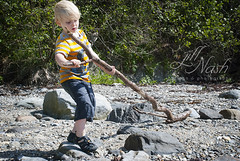 Lugging a branch for the dog (grilljam) Tags: seamus 4yrs summer august2016 mitchellfield harpswell whatagorgeousday extremelywindy