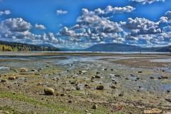 09-18-2016-The Flats (Valerie Sauve-Vancouver) Tags: mud flats maplewoodflatsconservation park nature outdoors northvancouverbc