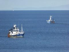 Transcend - Fruitful Bough (allyB803) Tags: morayfirth fishingboat squidfishing