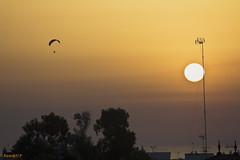 Volando en un atardecer  -  Flying in a sunset (ricardocarmonafdez) Tags: atardecer color cielo sunset sky luz light dorado golden clouds siluetas silhouettes parapente paragliding sol sun contraluz backlighting