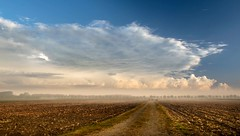 Ready for fall (marielledevalk) Tags: fall blue thenetherlands dutch holland sky clouds morning mist road horizon landscape country
