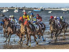 CARRERA CABALLOS SANLUCAR BARRAMEDA 2012 (pietroalge) Tags: summer horses espaa beach animals race caballos spain playa racing andalucia cadiz carrera sanlucar