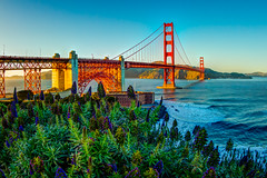 The Beautiful Golden Gate Bridge in all her glory (tobyharriman) Tags: pictures ocean sf sanfrancisco bridge flowers sunset beautiful architecture canon photography bay colorful scenic large fisheye bayarea prints sanfran hdr photomatix goldengatebridgebridge indurotripod tobyharriman fusionblend