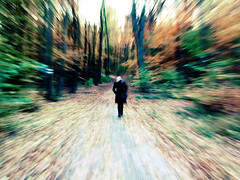 Autumn Forest (CoolMcFlash) Tags: wood autumn woman motion blur tree fall nature colors leaves forest person austria sterreich exposure zoom path walk laub herbst natur fujifilm frau wald bltter bume farben pfad bewegungsunschrfe spazieren herbstfarben unschrfe herbstlich waldpfad s100fs