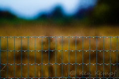 Barriers (Camera-Tales) Tags: morning sunset storm fall up sunshine rain vertical metal closeup rural fence point liberty dawn freedom evening drops pain dangerous wire gate pattern escape close symbol cloudy dusk farm steel country border nobody security line prison wires edge jail concept thin agriculture protection