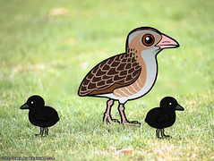 Birdorable Corn Crake (birdorable) Tags: cute bird corncrake birdorable