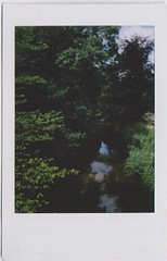 Trees (ComeJuly) Tags: trees polaroid instant fujifilm instax