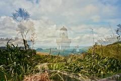 Lighthouse (Jay Herself) Tags: new light newzealand lighthouse house colour film analog 35mm exposure doubleexposure olympus auckland zealand heads manukau penisula awhitu manukauheads az300 olympusaz300 awhitupenisula