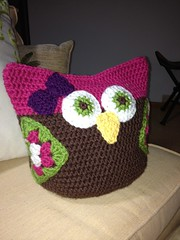 (PopTopDiva) Tags: pink baby brown green girl toy stuffed stroller nursery crochet blanket owl crib photostream