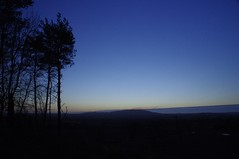 Early morning blues (Sundornvic) Tags: trees sky sun tree pine clouds sunrise woods shine shropshire sillhouette wrekin hilll haughmondhill