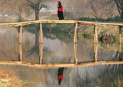 Which way ! We have crossed the bridge ! (Monsoon Lover) Tags: woman india flickr political kashmir srinagar sudipguharay kashmiriwoman kashmiriyouth modernkashmir