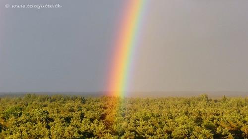 Rainbow, Zeist, The Netherlands - 0208