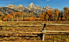 Autumn Fence (Jeff Clow) Tags: autumn fall fence seasons grandtetonnationalpark jacksonholewyoming anawesomeshot tpslandscape tpsnature