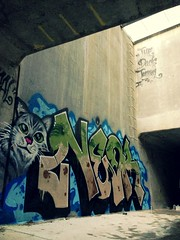 Neor The Cat One (El Funky Taladro) Tags: county orange cats never one graffiti duck die tunnel trains kings shit funk tunnels ruche rusk the neor knd