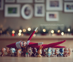 Elf on the Shelf, December 2nd (snippets_from_suburbia) Tags: elfontheshelf elfonashelf