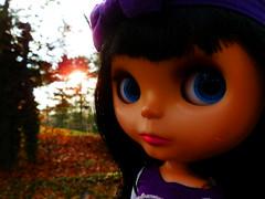 49.52 WB The sun!
