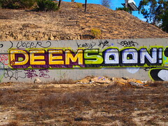 DEEM/SOON (BGIZ) Tags: art graffiti tsa walls soon dbr deems