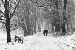 Winter walk on the avenue (bmielec) Tags: trees winter people bw snow tree bench couple para walk sony poland polska avenue krakw cracow zima aleja nieg spacer ludzie nex drzewo drzewa manuallens awka krakoff nex3 snapseed autochinon50mmf19kmount