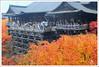 20121126_6864a_京都之秋 (Redhat/小紅帽) Tags: autumn fall japan maple kyoto redhat 京都 日本 紅葉 秋 清水寺 楓葉 あき 秋天 楓紅 もみじ 小紅帽 秋雨 きよみすでら