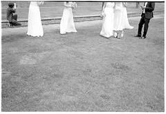 Brautjungfern (Christoph Schrief) Tags: frankfurtammain hochzeit brautjungfern leicam2 zeisscbiogon2835 agfaapx100newneu rodinal 20 150 10min sw film analog selfdeveloped