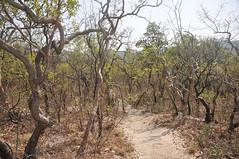 Chapada dos Veadeiros (Stella Pado) Tags: brasil gois alto paraso de parque nacional da chapada dos veadeiros national park cerrado trilha treeking hiking nature natureza paisagem landscape