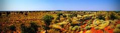 Uluru rock panoramic Color (krillmerma) Tags: vasr rock ayres outback australia panorma uluru distance panoramic